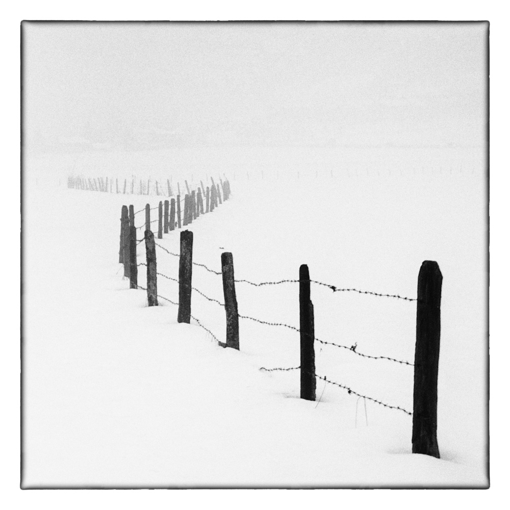 Ando-Fuchs-Winter-Photo-International-3