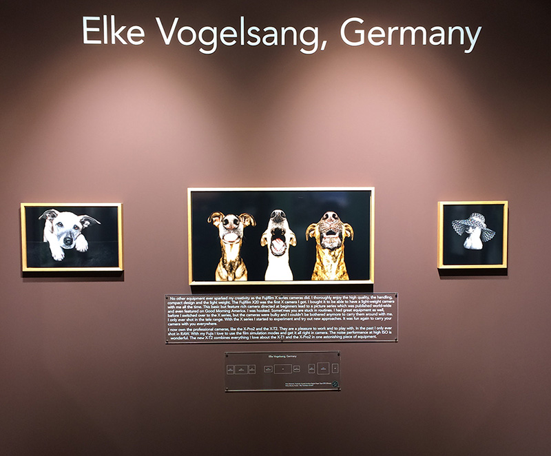 Elke-Vogelsang-photo-international-photokina-gallerie