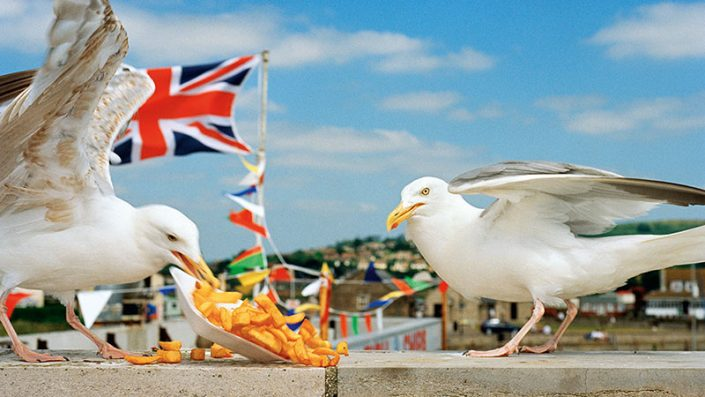 Martin-Parr-ThinkofEngland-Dorset-Kunstfoyer-MagnumPhotos-vorschau