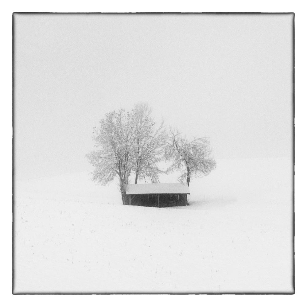 Ando-Fuchs-Winter-Photo-International-1