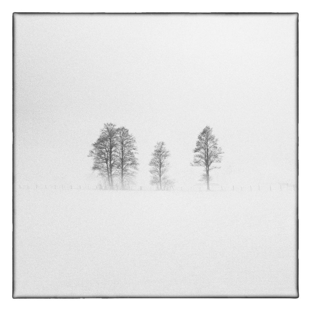 Ando-Fuchs-Winter-Photo-International-2