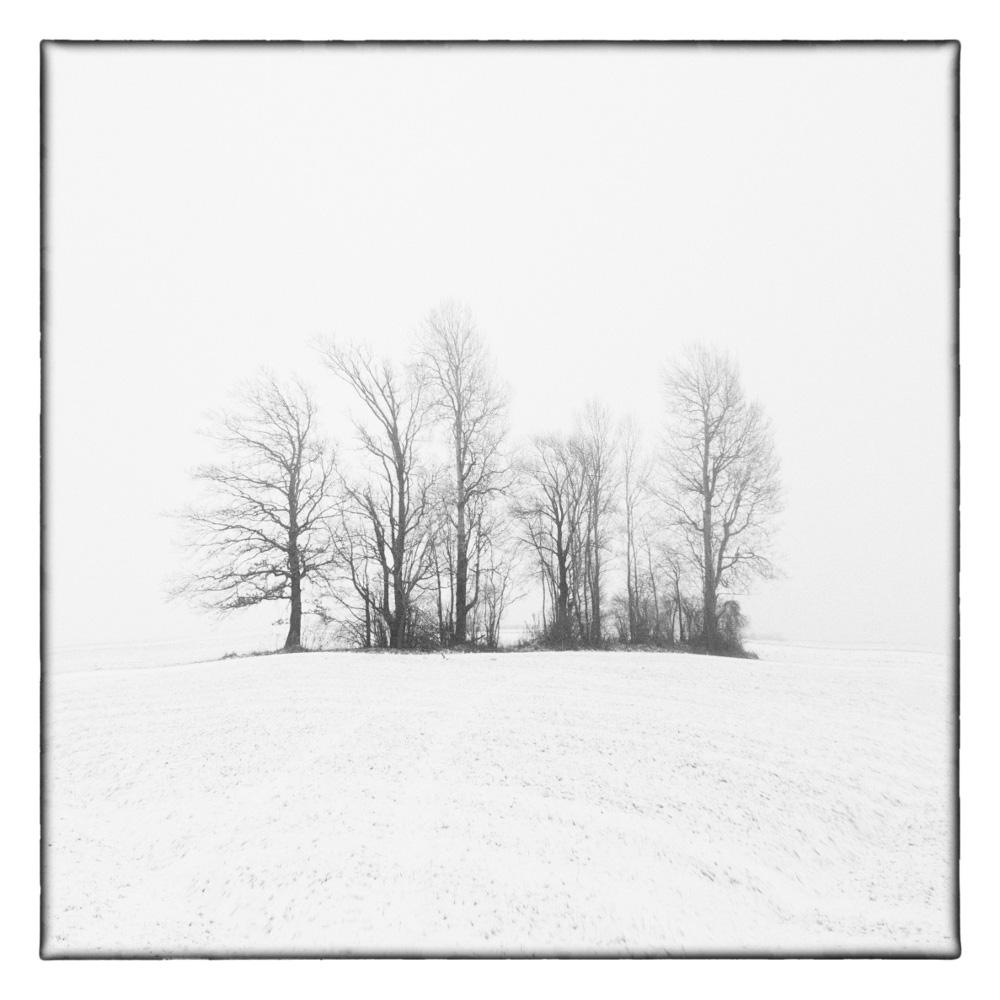Ando-Fuchs-Winter-Photo-International-4