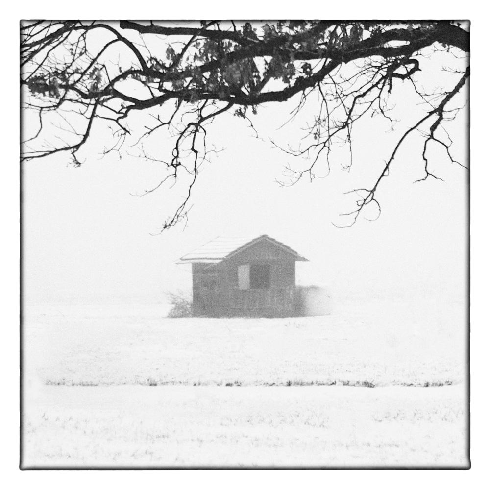 Ando-Fuchs-Winter-Photo-International-6
